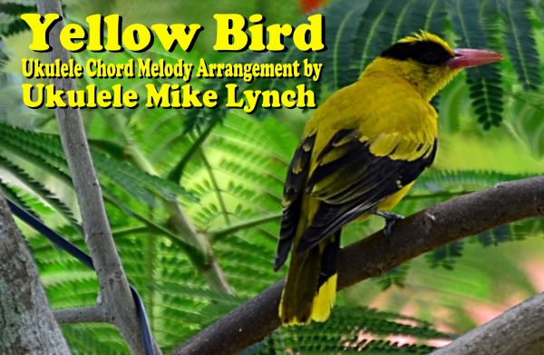 Yellow Bird complete