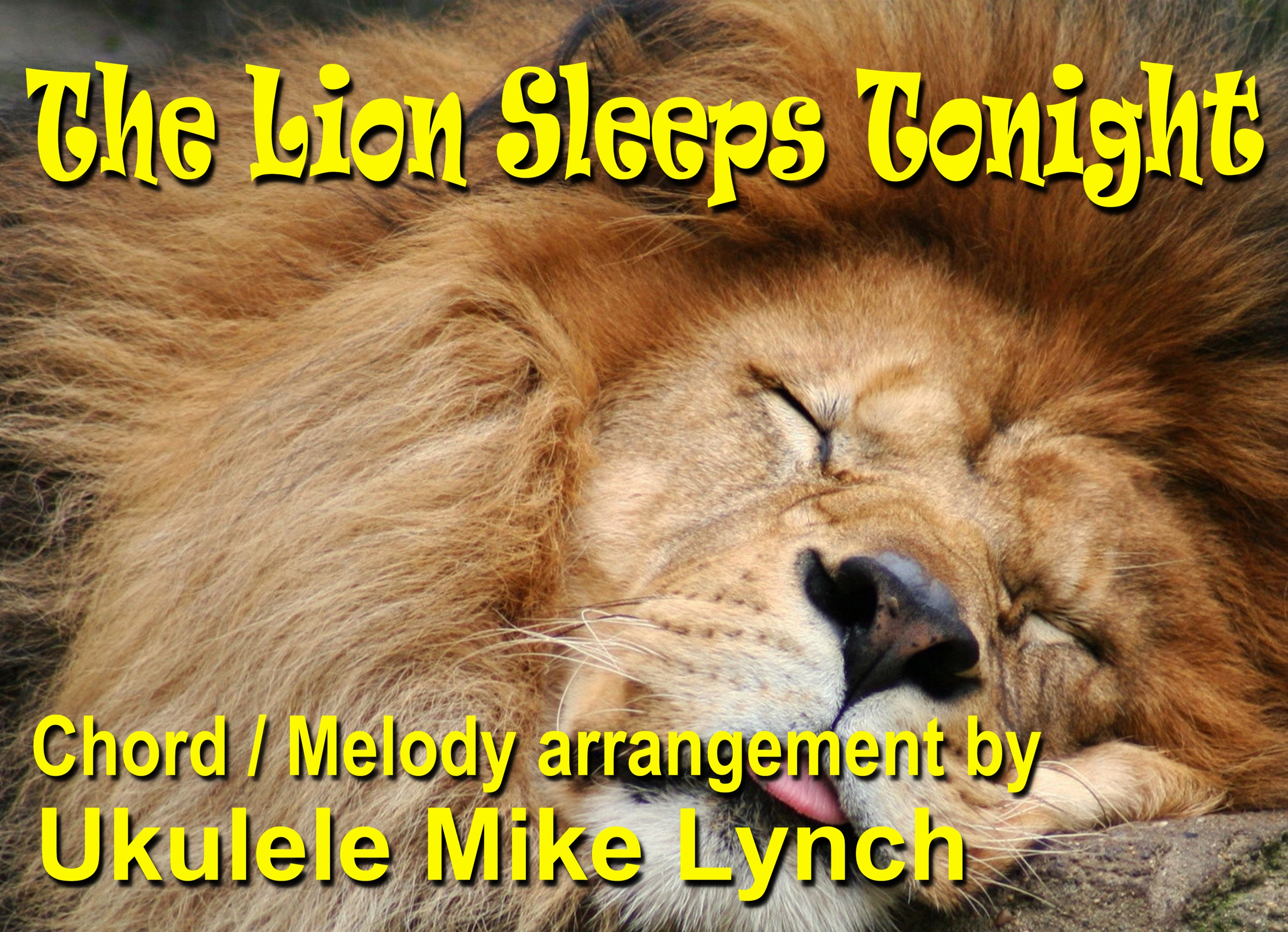 The Lion Sleeps Tonight Now Available In Chordmelody